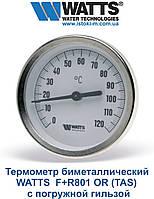 Термометр WATTS F+R801 OR (TAS) биметаллический с погружной гильзой
