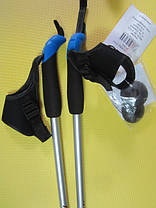 Палки для скандинавской ходьбы NW602 Nils Extreme, фото 2