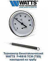 Термометр WATTS F+R810 TCM (TSS) биметаллический накладной на трубы, фото 1