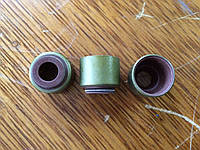 Сальники клапанов для погрузчиков XCMG ZL18 (LW188), XT860  Dong Fang LR4105 / YTR4105