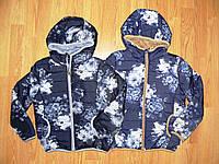 Куртки  на девочек оптом, F&D , 6-16 рр.