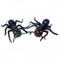 Резиновый муравей