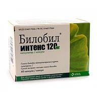 Билобил Интенс 120 мг - Улучшает циркуляцию крови и функцию мозга - капс. 120 мг № 60