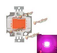 Full Spectrum 10Вт Pink LED Plant Grow Light Lamp Chip for Garden 9-12V