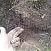 Сетка пластиковая от кротов  0,5*100 м (12*14мм)