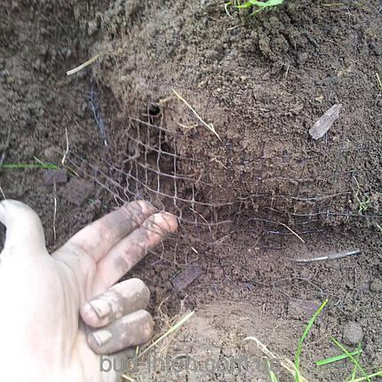 Сетка пластиковая от кротов  0,5*100 м (12*14мм), фото 2