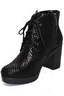 Женские ботинки (арт.028рептилия), фото 1