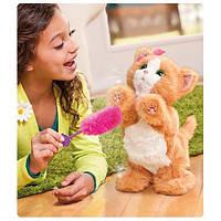 Интерактивная игрушка- Дейзи игривый котенок FurReal Friends от Hasbro, фото 1