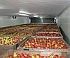 Холодильная камера для овощей и фруктов