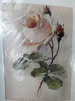 """Вафельная картинка """" роза"""""""