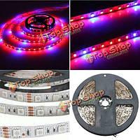 1м 2м 3м 4м 5м 5:1 5050 водить SMD LED гидропоники завод расти свет прокладки 12V