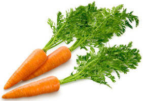 Семена моркови для фермеров