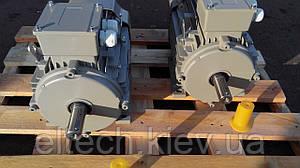 3кВт/1500 об/мин, лапы, 13AA-100L-4-В3. Электродвигатель асинхронный Lammers