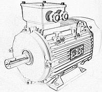 Электродвигатель асинхронный Lammers 13AA-80M-2-В3-0,75квт, лапы,3000 об/мин