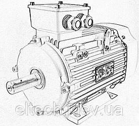 0,75кВт/3000 об/мин, лапы. 13AA-80M-2-В3. Электродвигатель асинхронный Lammers.