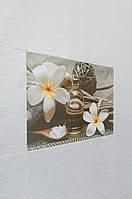 Плитка колекции Olivia Оливия