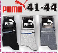 """Носки спортивные мужские демисезонные """"Puma"""" средние 41-44р. НМД-388, фото 1"""