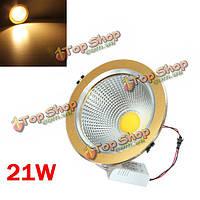 Удара 21w LED потолок вниз свет Золотая раковина Ременный привод 85-265в