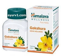 Гокшура, Гималаи / Gokshura, Himalaya / 60 таб