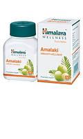 Амалаки, Хималая / Amalaki, Нimalaya / 60 кап