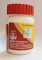 Шиладжит Расаян, Дивья / Shilajeet Rasayan, Divya Pharmacy / 120 таб.