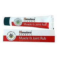 Аюрведический крем от мышечной и суставной болей, Гималая / Muscle & Joint Rub, Himalaya / 20 г