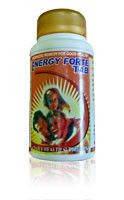 Энержи фортэ, Шри Ганга / Energy Forte, Shri Ganga / 100 tab