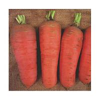 Семена моркови Шамарэ 50 грамм Semo