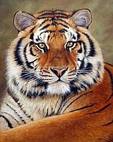 """Алмазная мозаика """"Тигр"""", картина стразами 30*40см"""