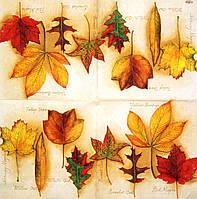 Редкие салфетки Осенние листья 1843
