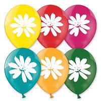 """Латексные воздушные шары BELBAL Бельгия пастель круглые с рисунком 10 дюймов/30см, """"Ромашки"""", печать шелкограф"""