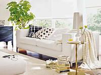 Озеленение и фитодизайн дома, коттеджа
