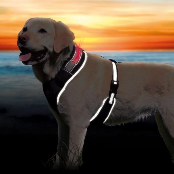 """Шлея для собак Trixie """"Flash Soft"""" светоотражающая 45-60 см"""