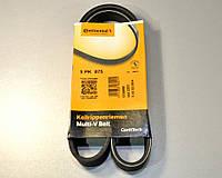 Поликлиновый (ручейковый) ремень на Renault Kangoo 1.2 (PS,-AC) 1997->11.2000 ContiTech (Германия) 5PK875