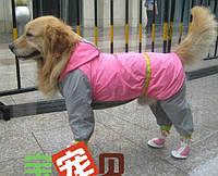 Легкий дождевик для собак средних и крупных пород. Одежда для собак.