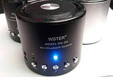 Портативная колонка WSTER WS-Q9 (Bluetooth) FM USB SDcard, фото 2