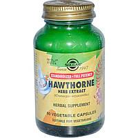Экстракт боярышника, Hawthorne Herb, Solgar, 60 капсул
