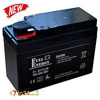 Аккумулятор для мопедов Full Energy FE-M1223B