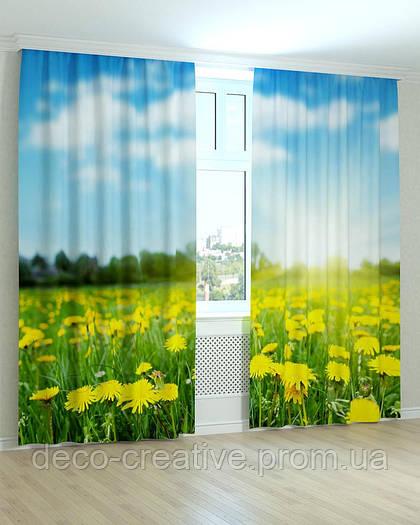 Фотошторы поляна цветов