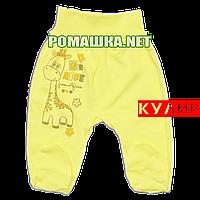 Ползунки (штанишки) на широкой резинке р. 62 ткань КУЛИР 100% тонкий хлопок ТМ Алекс 3166 Желтый