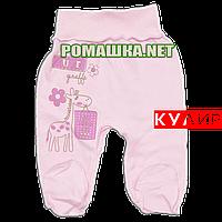 Ползунки (штанишки) на широкой резинке р. 62 ткань КУЛИР 100% тонкий хлопок ТМ Алекс 3166 Розовый2