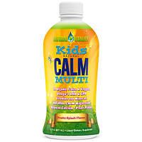 Витамины для детей Натуралкалм с Омега, Natural Vitality, Kids Natural Calm Multi, 887 мл