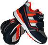 Дитячі кросівки для дівчинки Clibee Польща розміри 25-30, фото 6
