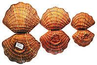 Декоративные плетеные ракушки, набор из 3 шт