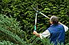 Комплексний догляд за садом