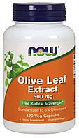 Экстракт листьев оливы, Olive Leaf, Now Foods, 500 мг, 120 капсул