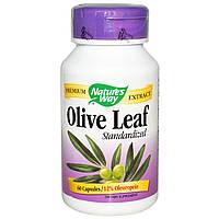 Экстракт листьев оливы, Olive Leaf, Nature's Way, 60 капсул