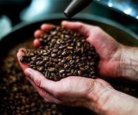 Мистецтво обсмажки кави, базовий рівень