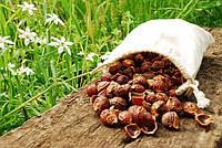 Мыльные орехи 0,5