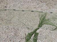 Бредень (невод, волок) усиленный 5 х 1.5